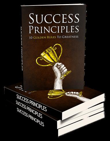 Success Principles Stacked eBook